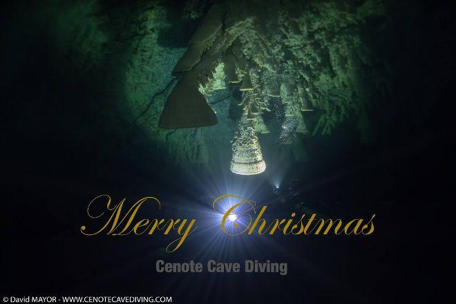 Cenote Cave Diving, Playa del Carmen, Mexico