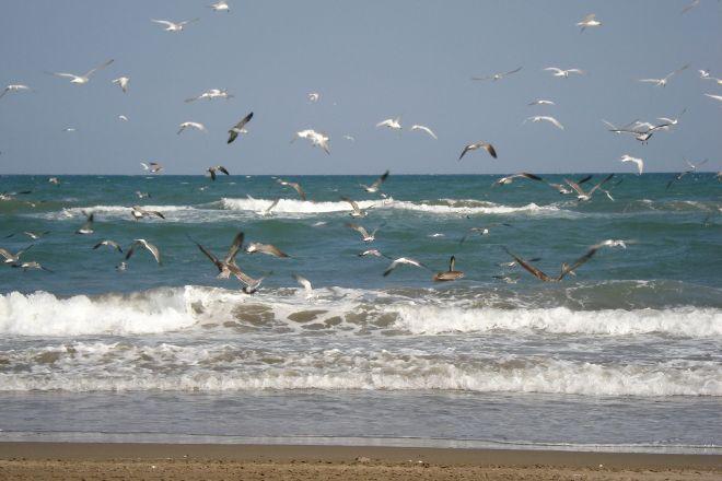 Chachalacas Beach, Veracruz, Mexico