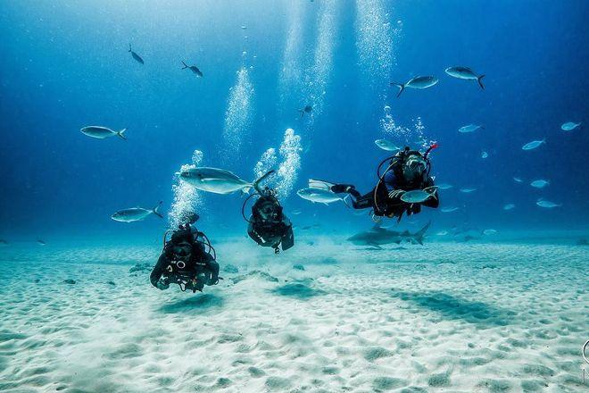 CozuDive Diving & Snorkeling, San Miguel de Cozumel, Mexico
