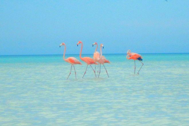 First Choice VIP, Playa del Carmen, Mexico