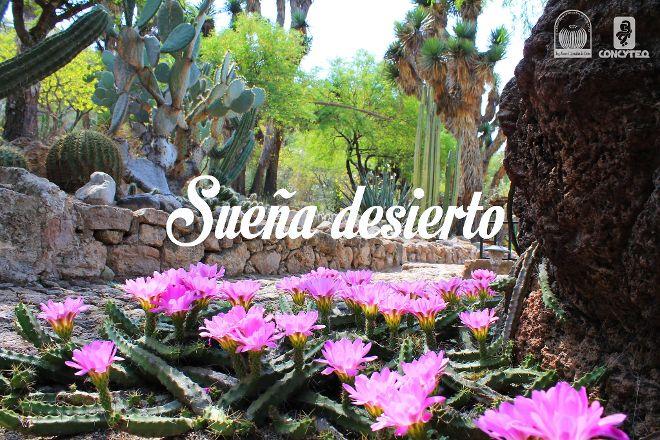 Jardin Botanico Regional de Cadereyta, Cadereyta de Montes, Mexico