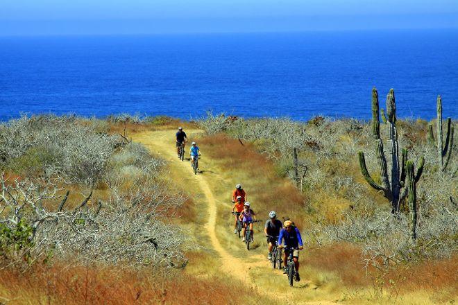 Mountain Bike Adventure by Cabo Adventures, Cabo San Lucas, Mexico