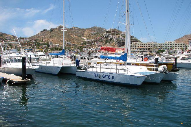 Pez Gato Cabo Sailing Catamarans, Cabo San Lucas, Mexico