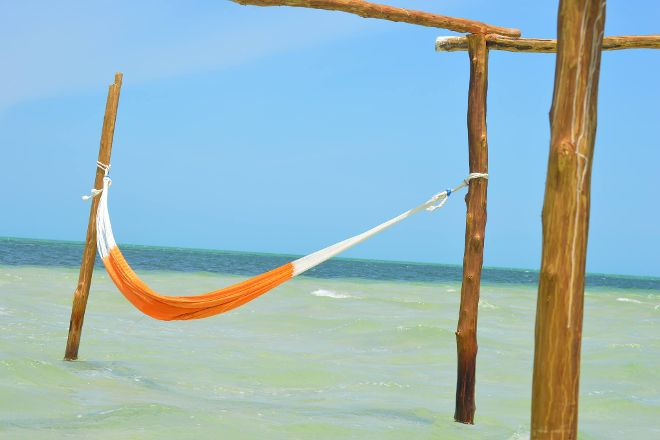Reaccion Expeditions - Day Tours, Playa del Carmen, Mexico