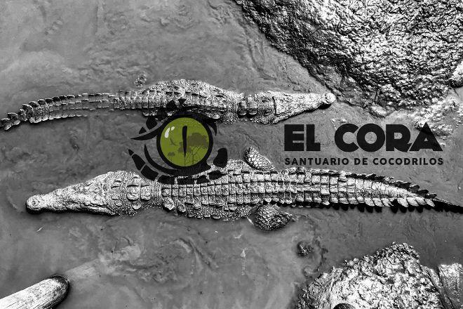 Santuario de Cocodrilos El Cora, Bucerias, Mexico