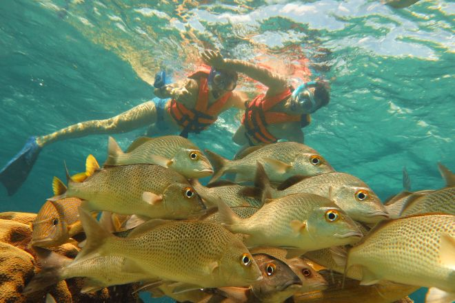 Snorkeling Adventures, Cancun, Mexico