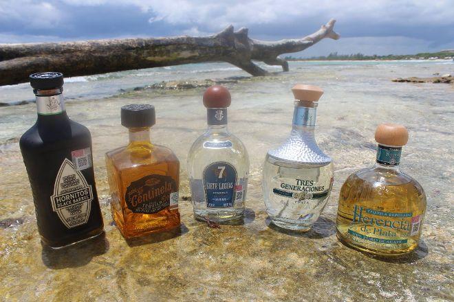 Tequila Academy, Playa del Carmen, Mexico