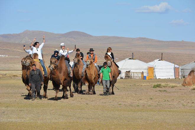 Amicus Travel Mongolia, Ulaanbaatar, Mongolia