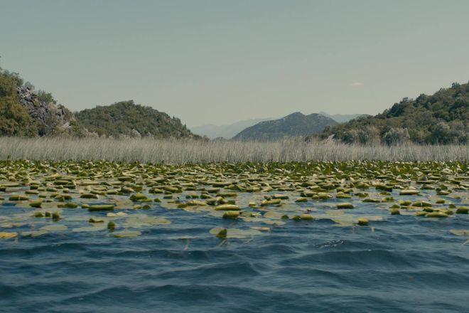 Skadar Lake - Boat Cruise Milena, Virpazar, Montenegro