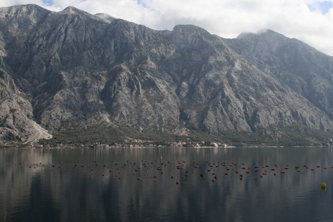 Školjke Boke, Orahovac, Montenegro