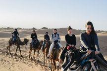 Desert Morocco Adventure, Casablanca, Morocco