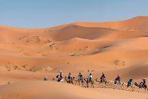Desert Star Travel