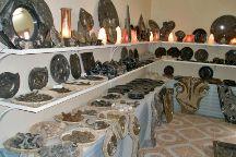 Fossil Gallery, Rissani, Morocco