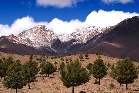 High Atlas Mountains, Marrakech-Tensift-El Haouz Region, Morocco