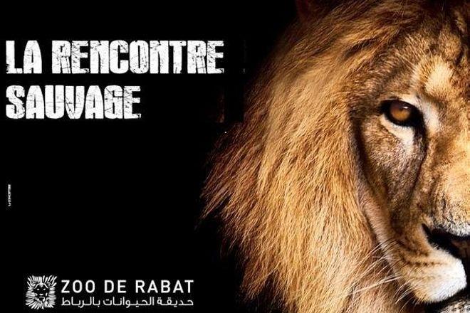 Jardin Zoologique de Rabat, Rabat, Morocco
