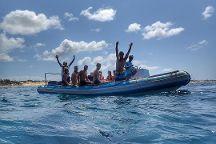 Liquid Dive Adventures, Tofo, Mozambique