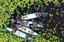 Vilanculos Canoe Safaris