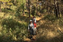 Green Discovery Myanmar - Day Tours
