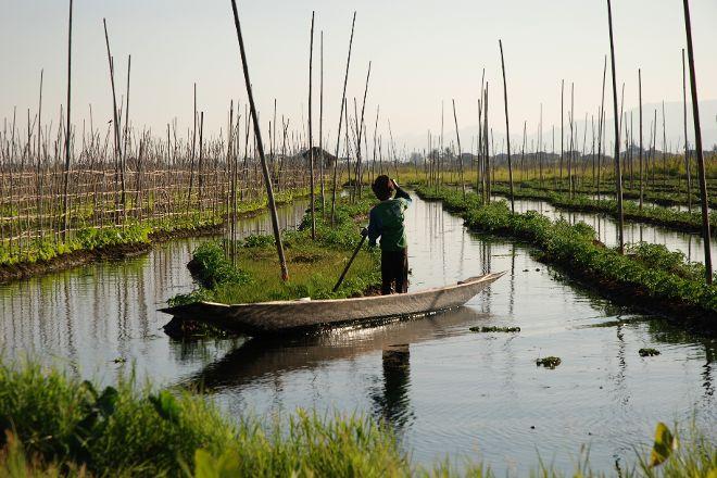 Floating Gardens, Taunggyi, Myanmar