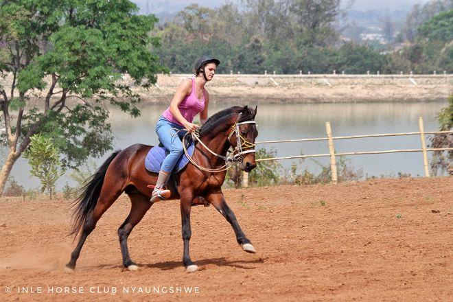 Inle Horse Club Nyaung Shwe, Nyaungshwe, Myanmar