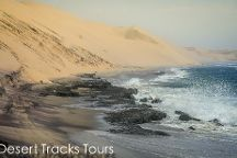 Desert Tracks Bookings & Safaris