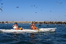 Eco Marine Kayak Tours
