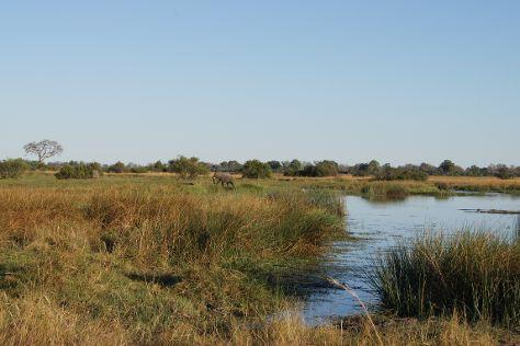 Nkasa Rupara National Park, Nkasa Rupala National Park, Namibia