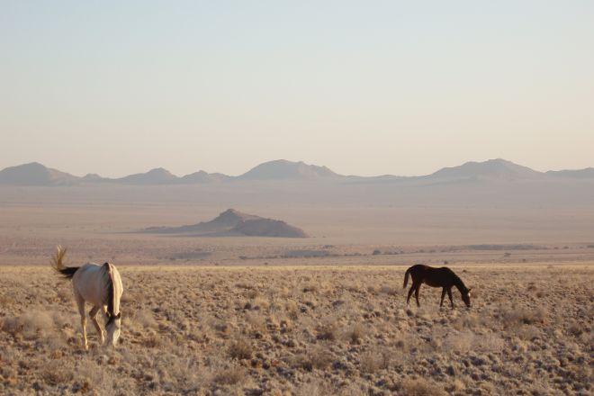 Garub Pan, Aus, Namibia