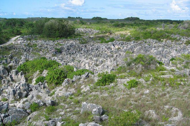 Central Plateau, Nauru