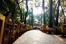Kalika Bhagwati Temple