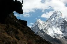 iTour Nepal Private Day Tours