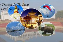 Signature Tours Pvt  Ltd