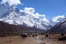 Trekking and Tour for Fair Tourism