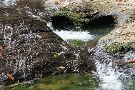 Sentier de la petite cascade