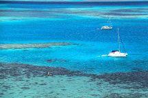 Dal'Ocean Charter