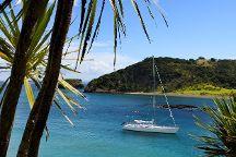 Bay of Islands Sailing/Gungha II