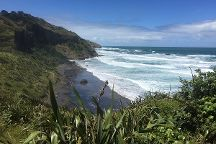 Beautiful Nature Tours Auckland