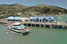 Black Cat Cruises, Akaroa, New Zealand
