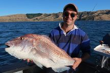 Black Pearl Charters - Private Trips, Wellington, New Zealand