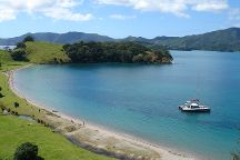 Carino Wildlife Cruises, Paihia, New Zealand