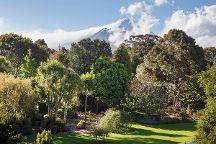 Hollard Gardens, Stratford, New Zealand