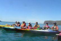 Mafi's Kayak Trip Akaroa
