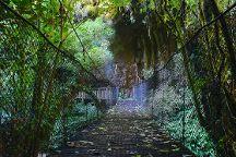 Mangapohue Natural Bridge Walk, Waitomo Caves, New Zealand