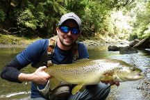 Rotorua Trout Guide