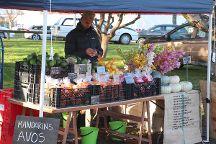 Taupo Market, Taupo, New Zealand