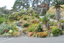 Wellington Botanic Garden, Greater Wellington, New Zealand
