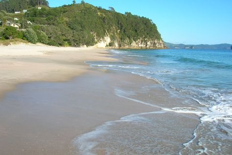 Hahei Beach Walk, Hahei, New Zealand