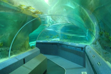 National Aquarium of New Zealand, Napier, New Zealand