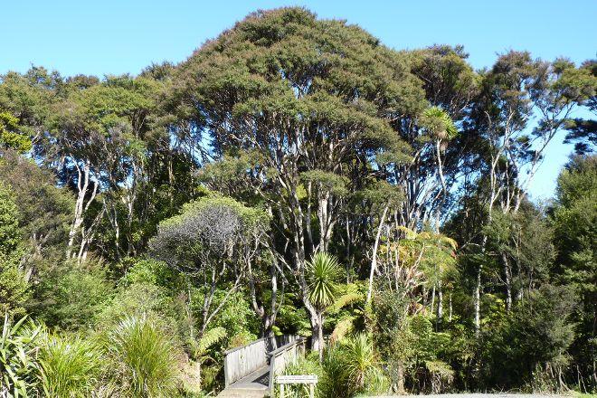 Arataki Visitor Centre, Piha, New Zealand