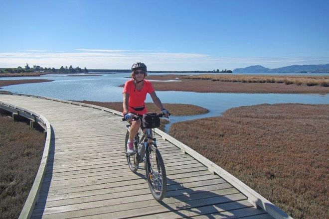 Nelson Cycle Hire and Tours, Nelson, New Zealand